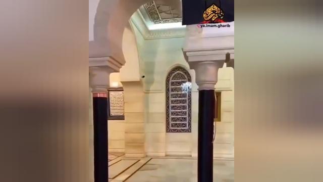 کلیپ کوتاه حرم حضرت رقیه (س)