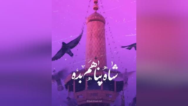 کلیپ افغانستانی تبریک ولادت امام رضا (ع) برای وضعیت واتساپ و استوری