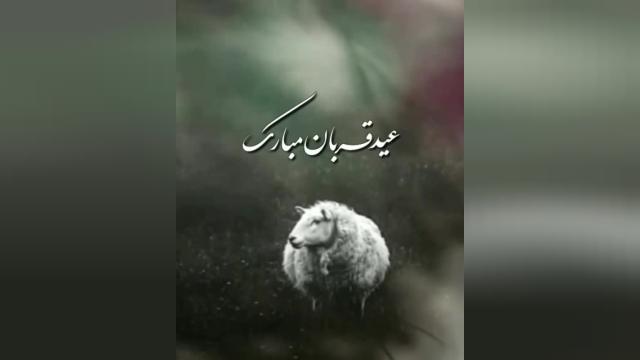 کلیپ کوتاه تبریک عید سعید قربان برای وضعیت واتساپ و استوری اینستاگرام